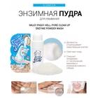 Elizavecca Milky Piggy Hell-Pore Clean Up Enzyme Powder Wash - 9142a-CB7C4A22-4A46-4D51-8998-1F6EAA3EE9CF.jpeg